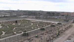 Rehabilitación Jardines del Palacio del Infante Don Luis