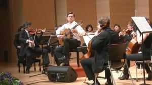 Concierto de Aranjuez. Orquesta