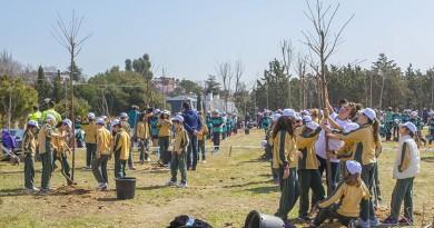 Escolares plantan árboles en Boadilla del Monte