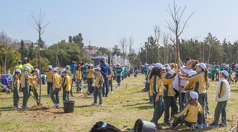 600 escolares plantan casi 200 rboles en el olivar de mirabal teleboadilla noticias de - Trabajo en boadilla del monte ...