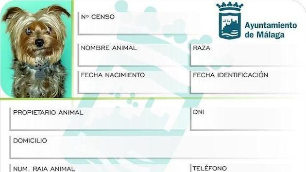 Censo de ADN de perros del ayuntamiento de Málaga