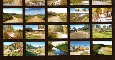modelo-de-portada-de-catalogo-de-caminos-publicos