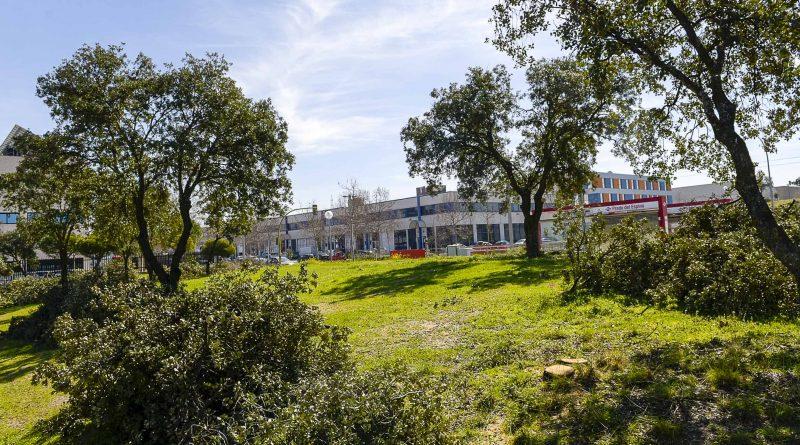 Zonas verdes del polígono Prado del Espino de Boadilla del Monte