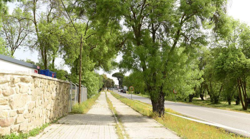 Nueva senda peatonal entre La Milagrosa y la intersección de la M-513 con la Avda Adolfo Suárez