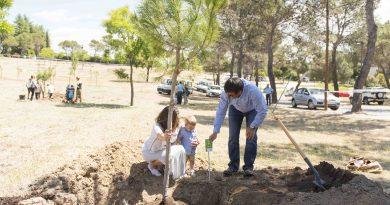 Un árbol en Boadilla para los bebés nacidos en 2016