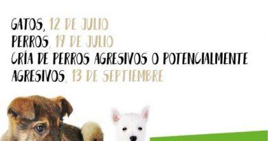 talleres sobre tenencia responsable de animales