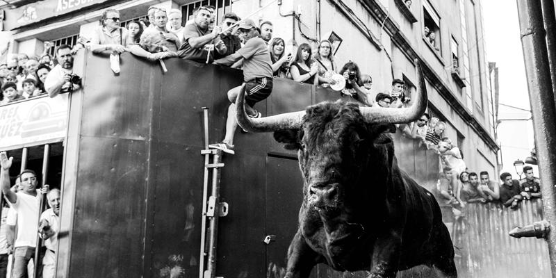 Exposición fotográfica Manuel Cosía. Vamos a ver los toros