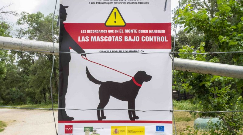 Campaña perros controlados