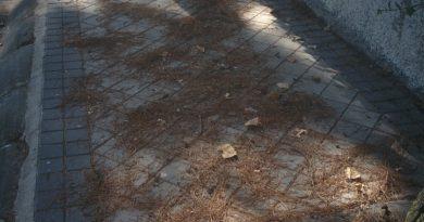 El PSOE denuncia falta de limpieza en verano