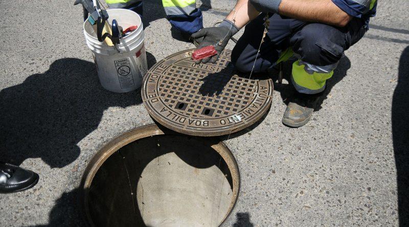 El Ayuntamiento refuerza el control de plagas en el casco urbano y Las Eras