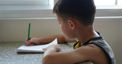 Teleboadilla. Niño haciendo deberes en casa