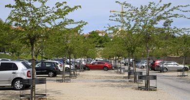 Teleboadilla. Protectores para árboles en el parking ecológico del Palacio
