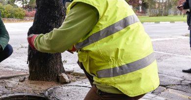 Campaña de control de roedores e insectos en el municipio