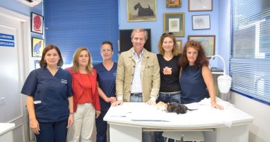 Boadilla pone en marcha un programa piloto de esterilización de gatos callejeros o asilvestrados