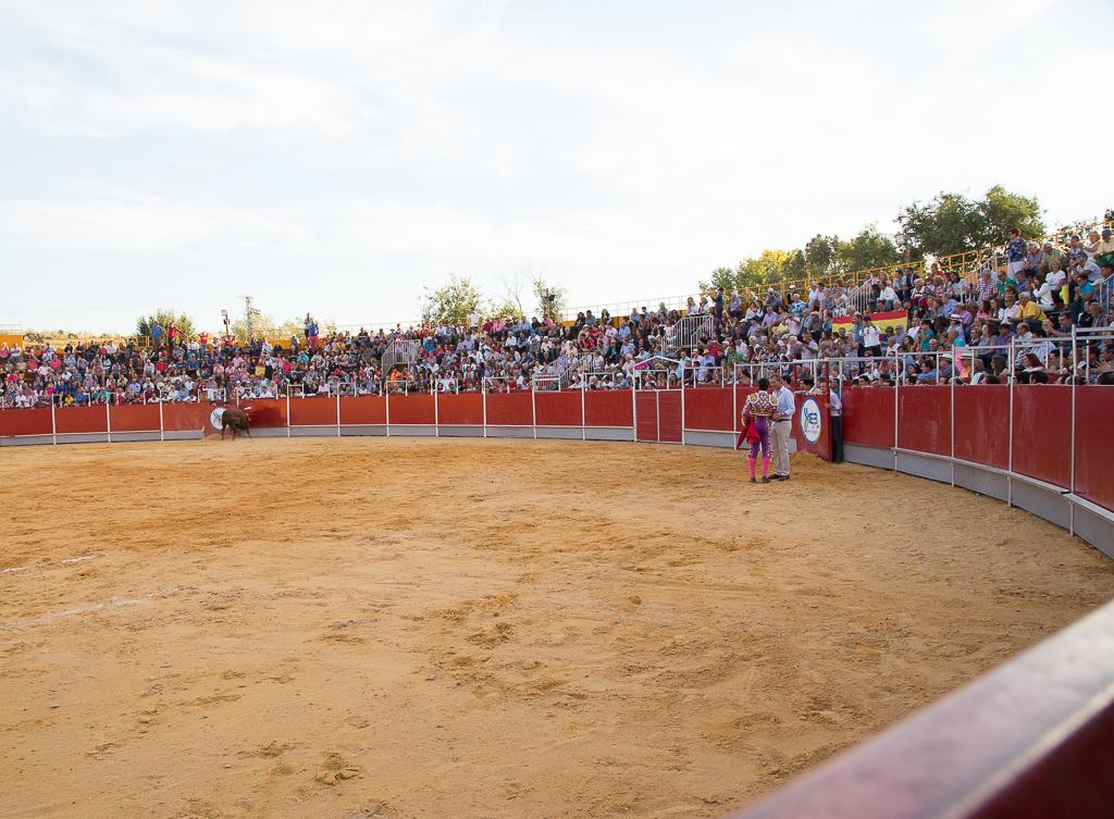 Festejos taurinos en las Fiestas de Boadilla 2018