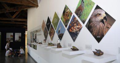 Aula Medioambiental de Boadilla del Monte