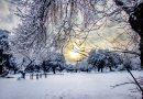 Teleboadilla. Primera nevada en Boadilla en 2021