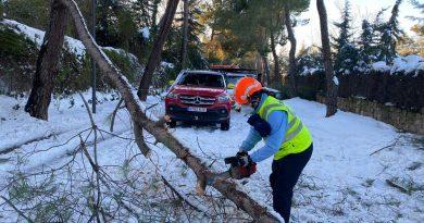 Operario retira ramas de árboles caídos en Boadilla del Monte