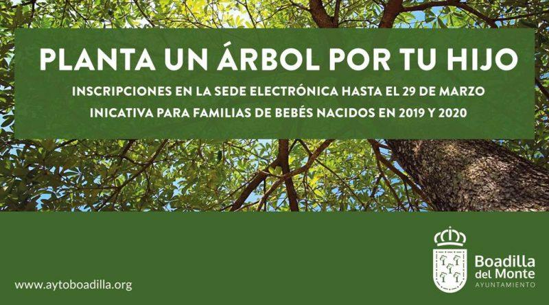 Teleboadilla. Los niños nacidos en 2019 y 2020 podrán tener un árbol en Boadilla que recuerde su nacimiento
